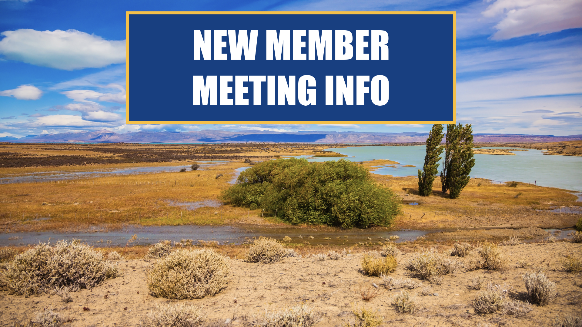 New Member Meetings